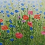 bloemenveld-aquarel-40x60